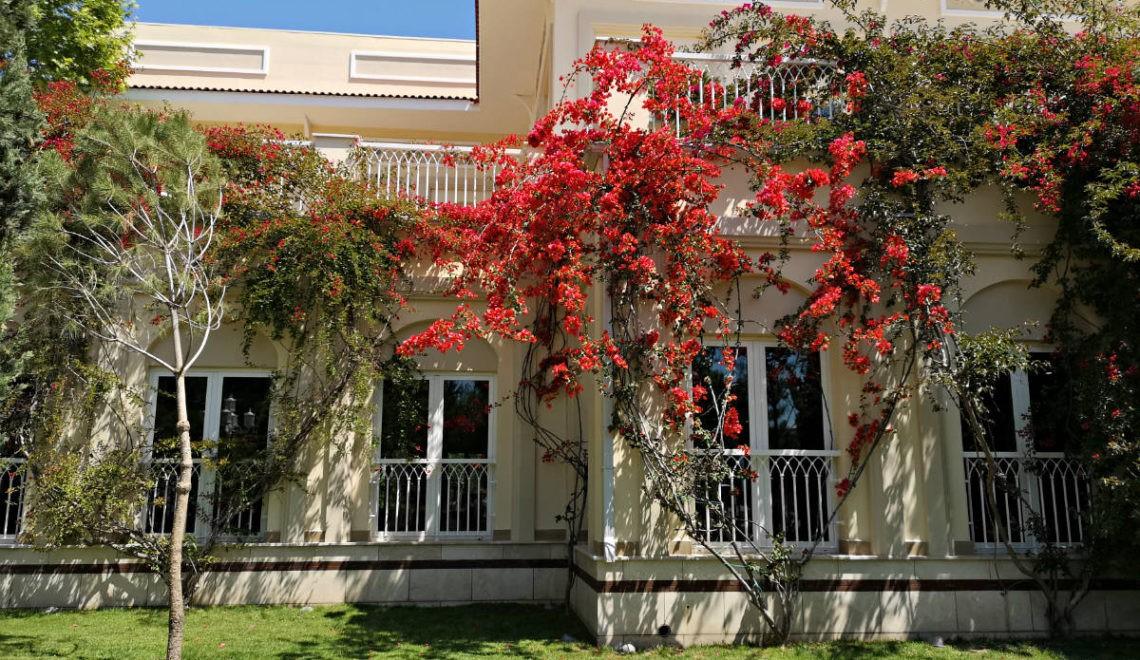 Hotelul Gural Premier – Plăcerea mea vinovată din Turcia!