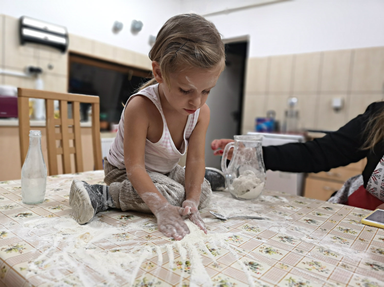 lucrează de la domiciliu fără educație