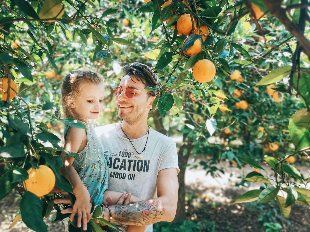 DaddyCool Peloponez Grecia livada portocali