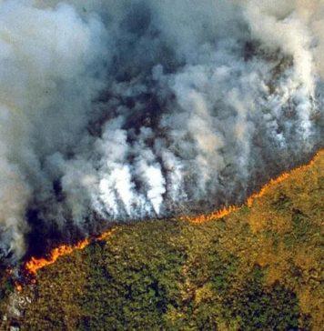 Amazon-Fires-INPE